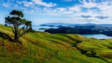 Coromandel Peninsula