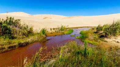 Te Paki Sand Dunes