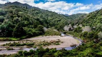 Motu Trail