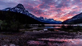 waterfowl lake-1