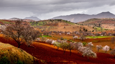 Countryside Morocco